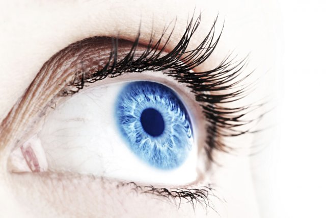 La carnosine protège la vue